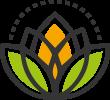 https://biocaribecostarica.com/wp-content/uploads/2016/05/Organic-1.png